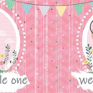 Welkom Kleinding (dogtertjie) / Welcome Little One (girl)