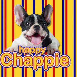 Happy Chappie